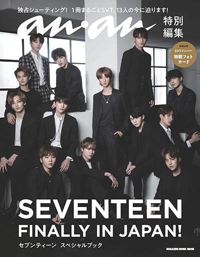 SEVENTEEN FINALLY IN JAPAN! セブンティーン スペシャルブック