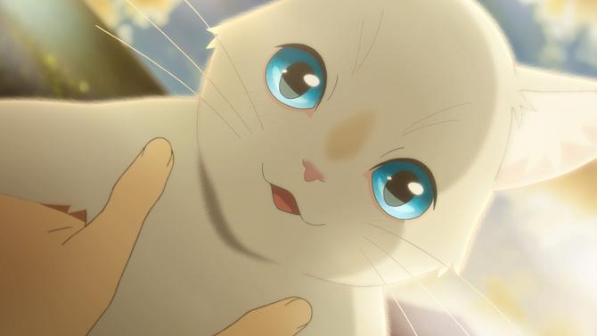 泣きたい私は猫をかぶる