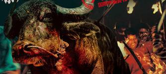 ジャッリカットゥ 牛の怒り
